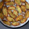 קיפודי תפוחי אדמה