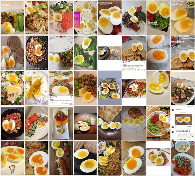 ביצים קשות - תמונות גולשים